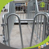 Galvanized Steel Good Quality Factory Pig Gestation Stall