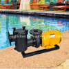 Electric Water Pumps Swimming Pool Pumps with Pre-Filter