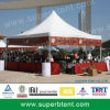16 Person 10X10 Ez up Canopy Tent