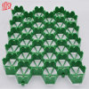 Plastic Grass Grid/Plastic Drainage and Green Black Grass Grid Sheet Mould/Gravel