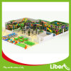 Novel Design Indoor Playground with Jungle Gym