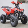 off Road 125CC ATV Quad Bike with Speedometer CE