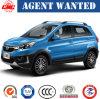 Chinese High-End SUV--Gasoline1.5t Mt Q25 SUV Sedan Car