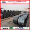 Hot Rolled Pickled and Oiled Steel Coil