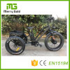 Front Drive Motor E Trikes Fat Tire E-Tricycle for The Adult 3 Wheels Electric Tricycle