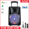 New Products! Feiyang Cheap Rechargeable Bluetooth Active Speaker with Trolley