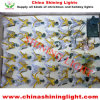 Colorbox Package Made in China LED Holiday Lights
