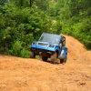 EEC Approved 4WD 800cc UTV (DMU800-01)