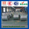 Top Quality China Galvanized Steel in Sheets/ Coil (GI) SPCC