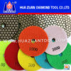 Dry Diamond Polishing Pad (HZDP05125)