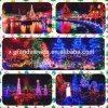 LED Christmas String Light Show in Vandusen Gardens