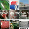 Prepainted Cold Rolled Galvanized Steel Coil PPGI