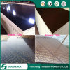 4′ X 8′ Phenolic Construction Shuttering Plywood