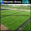 Cheap Man Glue Artificial Grass Carpet 250stitch