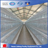 Hot Galvanization Poultry Farm Layer Chicken Cage