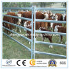 Galvanized Heavy Duty Steel Fence Panel/Cattle Panel