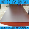 Brown Film Faced Plywood for Construction Concrete Formwork Plywood Waterproof Price