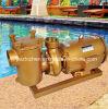 5-15 HP Swimming Pool & Sea Copper Pumps (BP)