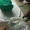 Knotted PE UV Stabilizer Anti Bird Net Mesh