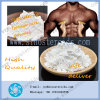 Anabolic Steroid Testosterone Isocaproate Gain Muscle CAS 15262-86-9
