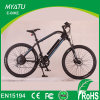 28 Inch Lithium Electric Bicycle with Hi Power Motor 500W