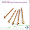 Hex Head Screw, Csk Screw, Round Head, All Kinds of Stainless Steel Screws
