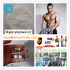 Pure Anabolic Steroid Hormone Powder Methyltrenbolone 965-93-5
