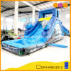 Funny Dolphin Inflatable Water Slide with Pool (AQ1079)