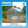 Small Polycarbonate Garden Greenhouse for Family