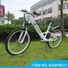 Spanniga Brand LED Light /250W Front Motor MTB Bicycle Electric Bike