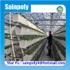 China PC-Sheet Hydroponic Greenhouse for Sale