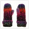 Lady Fashion Wool Gloves (JYG-25249)