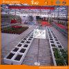 Long Life-Span Polycarbonate Sheet Multi-Span Venlo Type Greenhouse
