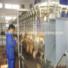 Full Set Steel Structure Chicken Slaughter Workshop with Equipment