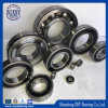 Single Row Deep Groove Ball Bearing (6200)