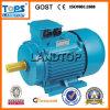 LTP Y2 Series 3 Phase Electric Motor