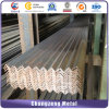 Stainless Steel Equal Angle Bar (CZ-A123)
