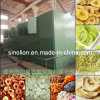 New Style Food Dryer/ Conveyor Dryer/ Mesh Belt Dryer for Food, Fruit