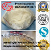 99.6% High Purity Nootropic Best Nutrition Supplements Pramiracetam 68497-62-1