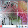 Acid Etched/Printed/Patterned/Art/Mirror Glass as Decoration Glass