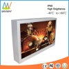 43 Inch Wall Mount Outdoor Advertising Digital Display Screen (MW-431OB)