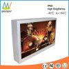 43 Inch Wall Mount Outdoor Advertising Digital Display Screen (MW-431OB)