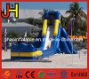 Super Long Lane Slide, Inflatable Water Slide for Competition