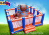 Sphinx Commercial Grade Inflatable Jumping Castle