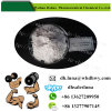 99% Purity Bodybuilding Steroid Powder Test E Testosterone Enanthate