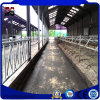 Sound Insulated Metal Buildings Frame for Cattle Farm House