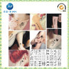 2016 Custom Pretty Fashion Temporary Tattoos (JP-TS076)