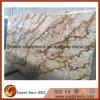 Natural Granite Big Slab for Countertop/Paving/Floor