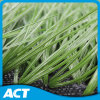 Artificial Turf, Artificial Grass, Synthetic Turf, Fake Turf (MDS60)