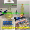 Injectable Vials Blend Steroid Sustanon 250 Injections for Muscle Gain